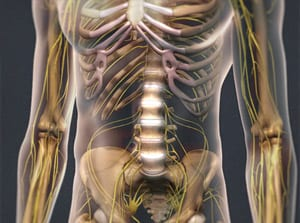 back pain, back injury, spine, vertebrae, spinal cord, interventional, pain, piedmont, wilson, physician