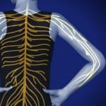 spinal cord, pain care, interventional, back pain, back surgery, doctor wilson, salisbury, mooresville, piedmont